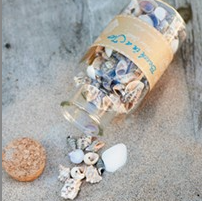Beach in a Jar Mixed Shell